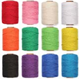 HULISEN 12 Rolls Macrame Cord, 3mm Natural Cotton Colourful Rope Twine String for Artworks, Handmade Crafts, Plant Hanger, Gi