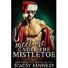 Meet Me Under The Mistletoe (A River Rock Christmas Romance)