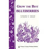 Grow the Best Blueberries: Storey's Country Wisdom Bulletin A.89