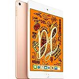 Apple iPad Mini WI-FI 64GB Gold (Renewed)