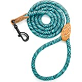 Mile High Life Leather Tailor Handle Mountain Climbing Dog Rope Leash Heavy Duty Metal Sturdy Clasp (Turquoise Green, 5 FT)
