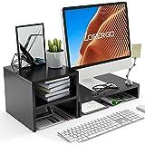 LORYERGO Monitor Stand Riser - Laptop Stand with 2 Tier Storage Shelf, Desktop Storage Organizer for Computer, Laptop, Printe