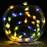 Impress Life Nautical Themed Party Decorations, Tropical Small Fish Led Blue Green Orange Battery-powered String lights 10ft