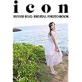 飯野雅デジタル写真集「icon」