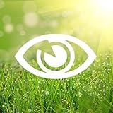 視力回復アイリフレッシュ
