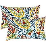 "LVTXIII Outdoor/Indoor Lumbar Pillow Case Covers, 12"" x 20"" Patio Garden Decorative Lumbar Pillow Covers Pack of 2 for Outdoo"