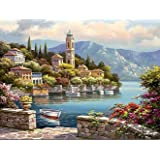 Paint by Numbers-DIY Digital Canvas Oil Painting Adults Kids Paint by Number Kits Home Decorations- Flower Castle 16 * 20 inc