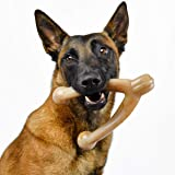 Pet Qwerks Wish BarkBone Dog Chew Toy, Bacon Flavor, Large