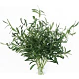 """Martine Mall 43.3"""" 4 Pcs Artificial Olive Branches, Artificial Outdoor Plants Long Stems Greenery Leaves Faux Plant Decor Fak"""