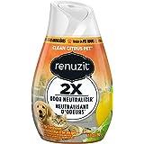 Renuzit Gel Air Fresher, Citrus Orchard, 198 Grams