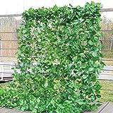 chelitte フェイクグリーン 壁掛け 観葉植物 フェイク 造花 インテリア ツル アイビー 吊り下げ ナチュラル 飾り用 撮影用 ホーム パーティー 結婚式 ポトス葉 2.3m/本 20本入り