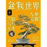 盆栽世界 2021年6月号 (2021-05-13) [雑誌]