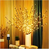 3 Pack Branch Lights for Vase, Warm White Lighted Twig Branches 60 LED Lights Artificial Tree Willow Lighted Branches for Hom