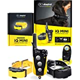 Dogtra IQ Mini 2-Dogs Remote Dog Training System for Smaller Dogs - 400 Yard Range Collar, Rechargeable Remote Trainer, Water