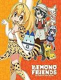 Kemono Friends: Complete First Season [DVD]
