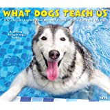 What Dogs Teach Us 2021 Box Calendar