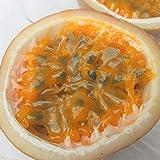 沖縄県産フルーツ パッションフルーツ 1kg(8~12玉)