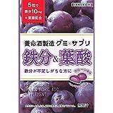 養命酒 グミ×サプリ 鉄分&葉酸 40g ×6袋