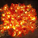 5 Pack Maple Leaves Garland String Lights,Thanksgiving Decorations Fall String Lights with 50 Ft/100 LED Maple Leaves for Ind