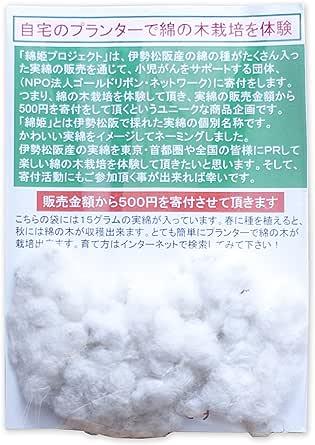 伊勢松阪産の実綿(綿の種)「綿姫」手芸・クラフト用