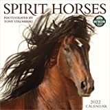 2022 Spirit Horses Wall Calendar