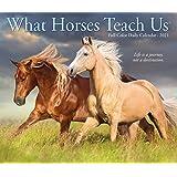 What Horses Teach Us 2021 Box Calendar