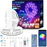 WiFi LED Strip Lights 65.6FT, Music Sync LED Light Strip Compatible with Alexa,Google Home Controlled by Smart APP, LED Light