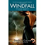 Windfall: Book Four of the Weather Warden: 04