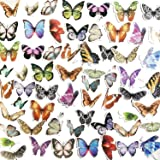 Doraking Plants DIY Decoration Stickers (Butterfly Collection)