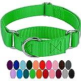 Country Brook Design - 1 Inch Martingale Heavyduty Nylon Dog Collar - Hot Green - Medium