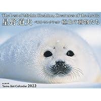 カレンダー2022 星野道夫カレンダー「極北の動物たち」ベストセレクション (月めくり・壁掛け) (ヤマケイカレンダー2…
