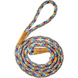 Wooflinen 7ft Ultra Reflective (Rainbow) Fatty Series Premium Dog Slip Leash - Made from Large Gauge Mountain Climbing Rope -