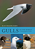 Gulls of the World: A Photographic Guide (English Edition)