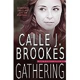Gathering (PAVAD: FBI Romantic Suspense Book 14)