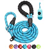 BAAPET 6 Feet Slip Lead Dog Training Leash for Large, Medium, Small Dogs (Blue)