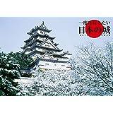 トライエックス 一度は行きたい日本の城 2019年 祝日訂正シール付き カレンダー CL-435 壁掛け 51×36cm 日本城