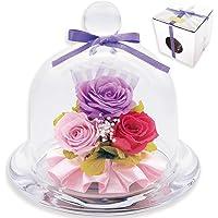 liLYS épice プリザーブドフラワー ガラスドームアレンジ バラ 3輪 シンプル型 エレガントパープル