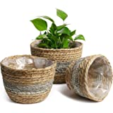 POTEY 740103 Seagrass Plant Basket Set of 3 - Hand Woven Basket Indoor Outdoor Storage Flower Pot Cover with Interior Plastic