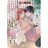 小説 きみは面倒な婚約者 (白泉社レディース・コミックス)