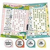 Dry Erase Bahavior Chart for Kid at Home, Magnetic Chore Chart for Kid, Reusable Reward Chart for Kids Behavior. Includes 60