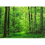 絵画風 壁紙ポスター 森林 森林浴 緑 目の保養 気分転換 癒し リフレッシュ (はがせるシール式) キャラクロ SNR-001A2 (A2版 594mm×420mm) 建築用壁紙+耐候性塗料