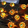 TURNMEON 3D Pumpkin String Lights Fall Decor, 20Ft 40 LED Warm White Lights Battery Powered Fall Lights Decoration for Hallow