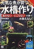 元気な魚が育つ水槽作り