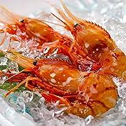 ボタンエビ 天然 特大 生ぼたんえび お刺身 お寿司 海鮮丼 (500g 15-20尾 お届け日時指定)