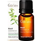 Gya Labs Basil Essential Oil - Mind Concentrator For Better Focus and Sore Free Body 10ml – 100 Pure Natural Therapeutic Grad