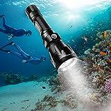 BlueFire Scuba Dive Flashlight 1000 Lumen CREE XM-L2 Professional Diving Flashlight LED Submarine Light Scuba Safety Lights W