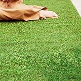 アイリスオーヤマ 人工芝 国産 2×5 ロールタイプ 芝丈3cm Uピン付属 リアル人工芝 IP-3025 スタンダード