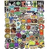 Cool Skateboard Brand Stickers Pack for Laptop Car Water Bottles Skate Bike Luggage Helmet Phone Vinyl 100pcs