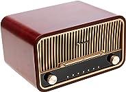 NAKAMICHI HERITAGE 820 RETRO AUDIO SYSTEM WITH FM RADIO