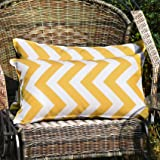 WESTERN HOME WH Pack of 2 Decorative Outdoor Waterproof Throw Pillow Covers Square Pillowcases Wave Pattern Cushion Covers Sh
